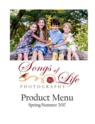 2017 Spring and Summer Product Menu