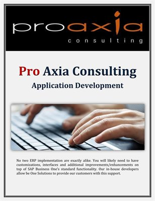 Pro Axia Consulting: Application Development