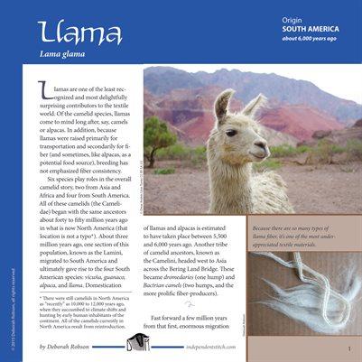 Deborah Robson's Guide to Fiber: Llamas