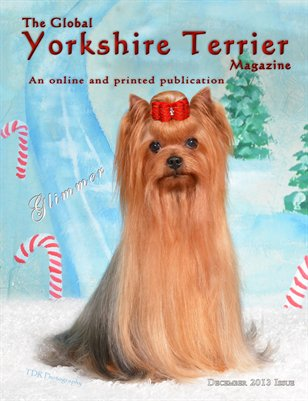 The Global Yorkshire Terrier Magazine -December 2013 Issue