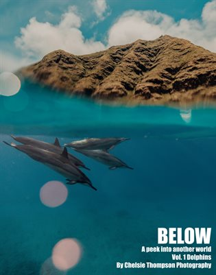 Below Vol. 1 Dolphins by Chelsie Thompson Photography