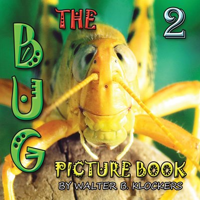 The Bug Picture Book 2