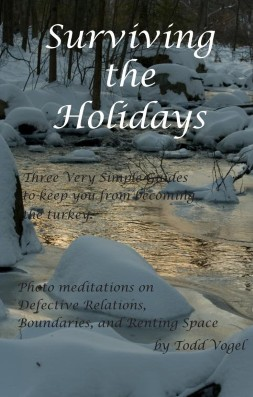 Surviving the Holidays - a pocket survival guide