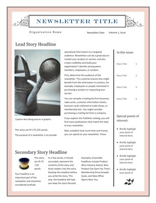 Newsletter Template for Microsoft Publisher