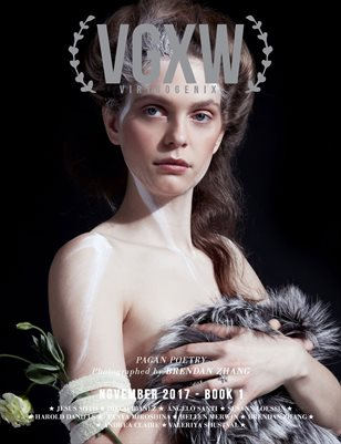 VGXW - November 2017 Book 1 (Cover 1)