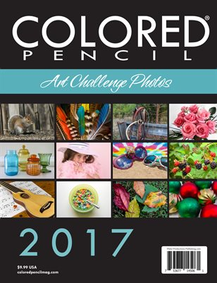 2017 Art Challenge Photos