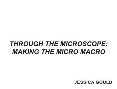 Through the Microscope: Making the Micro Macro