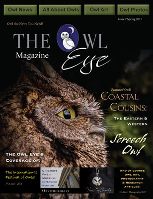 Owl Eye Magazine Issue 7 Spring 2017