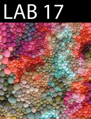 LAB 17