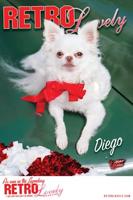 Diego Cover Poster