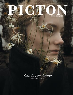 Picton Magazine December 2018 N5, Cover 4