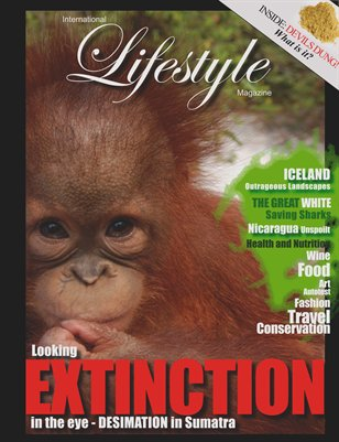 International Lifestyle Magazine Issue 14