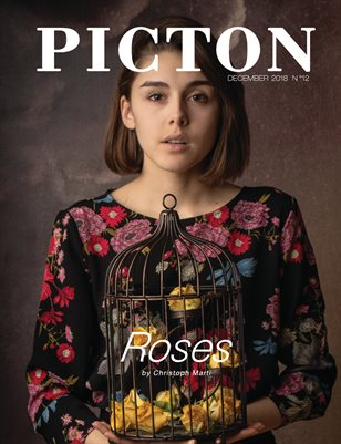 Picton Magazine December 2018 N12 Cover 2