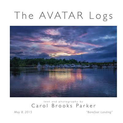 Avatar Logs - 2015 Barefoot Landing