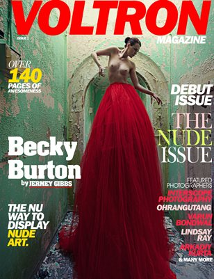 Voltron Issue 1 - Becky Burton/Jeremy Gibbs