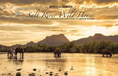 "2019 Calendar - 11"" x 17"" - Salt river Wild Horses - Large Tabloid Size"