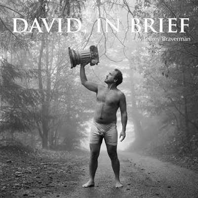 David, In Brief