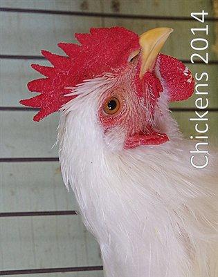 Chickens 2014
