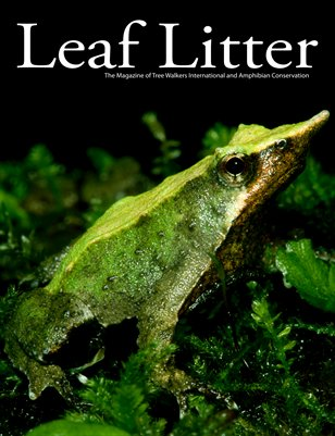 Leaf Litter (Vol. 4, Issue 1)