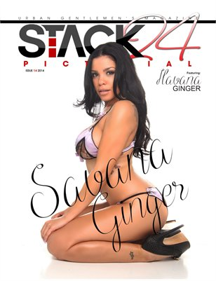 Stack 24 Pictorial Issue 14 Savana Ginger Cover