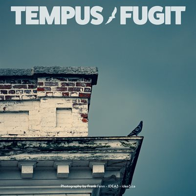 Tempus Fugit Project Manager Calendar 2021 Birds