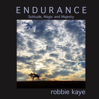 Endurance - Solitude, Magic and Majesty