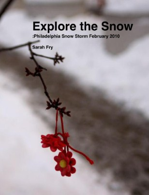 Explore the Snow