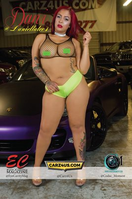 "Dani Lee ""Car Candy"" 12x18 Poster"