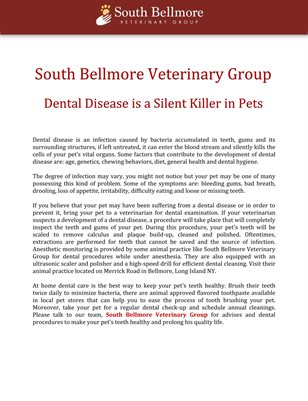South Bellmore Veterinary Group: Dental Disease is a Silent Killer in Pets