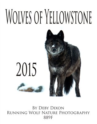 Wolves of Yellowstone 2015 Calendar