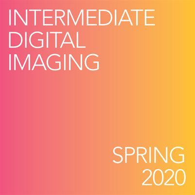 Photo 115: Intermediate Digital Imaging