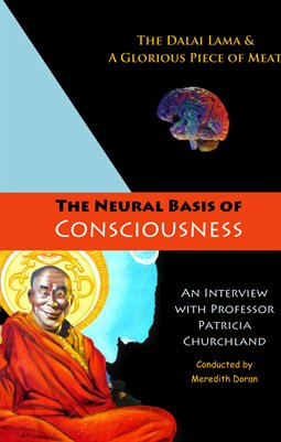 The Neural Basis of Consciousness, the Dalai Lama, and a Glorious Piece of Meat