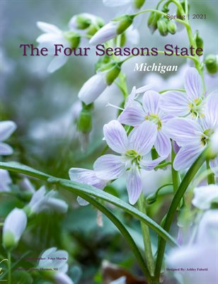 The Four Seasons State - Michigan Spring #2