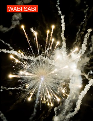 Issue 2, 2011. Fireworks from Below