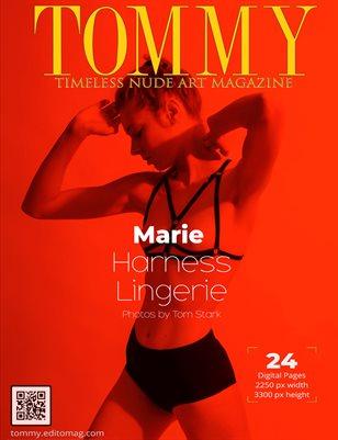 Marie - Harness Lingerie