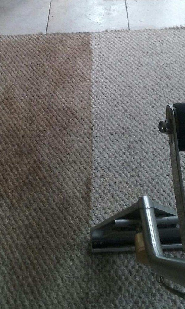 lakewood ranch carpet cleaner