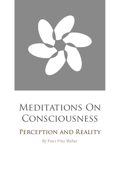 Meditations on Consciousness