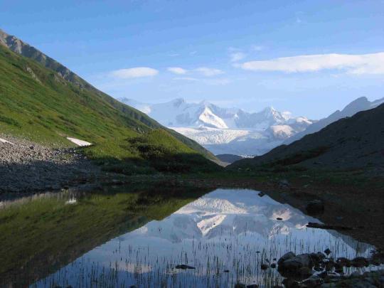 Five Element Acupuncture, Anchorage Alaska