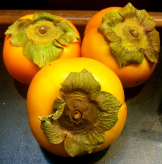 Eating with the Seasons: 5 Yummy Fall Foods, Cloud Gate Acupuncture and Healing Arts in Broomfield, Colorado