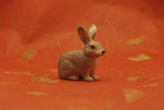 2011 Year of the Rabbit -
