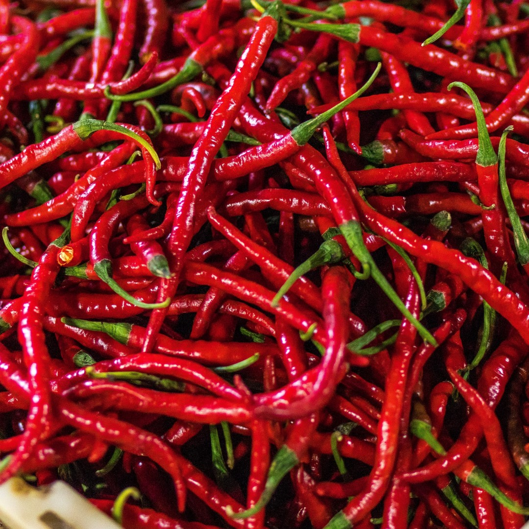 The Healing Properties of Cayenne Pepper, Dixon Chiropractic in Oakland Park, Florida