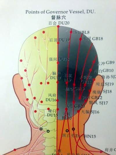 Du20 Northampton Acupuncture