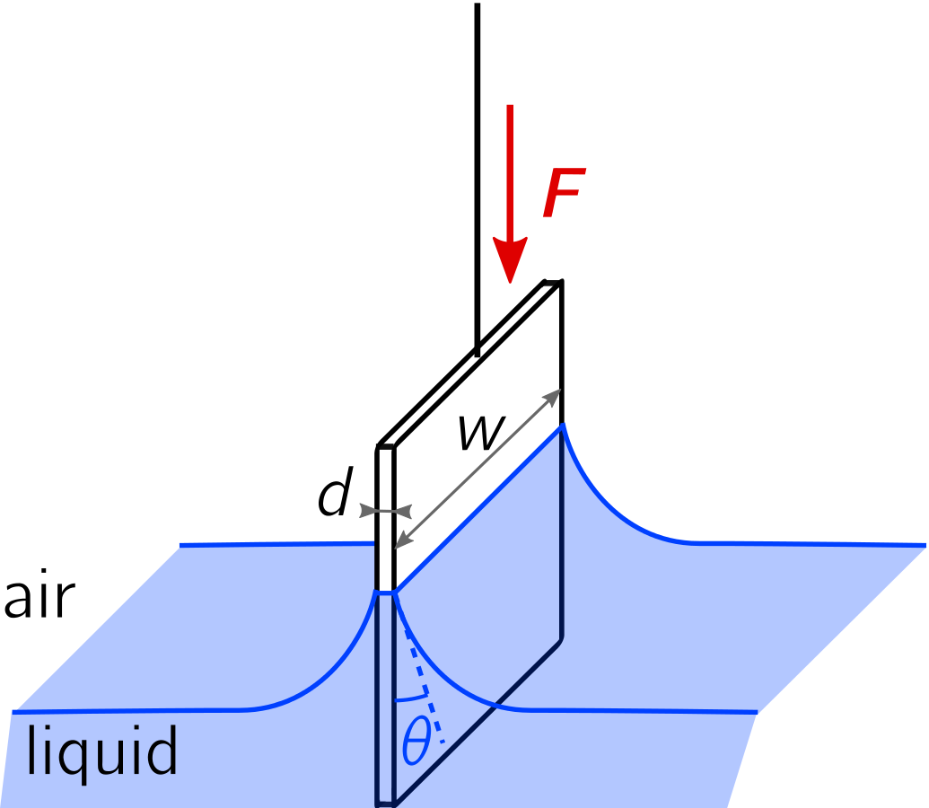 Liquid rising on both sides of rectangular plate with cylindrical meniscus extending across the length of the plate