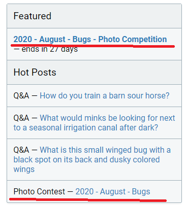 Bug with featured posts showing in the Hot list