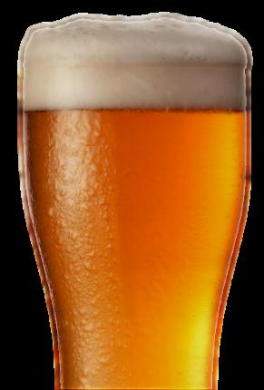 2018 home beer 430