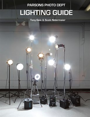 Parsons book Dec 2012