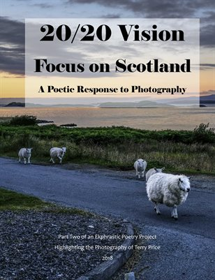 20/20 Vision: Focus on Scotland