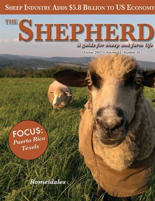 The Shepherd October 2017