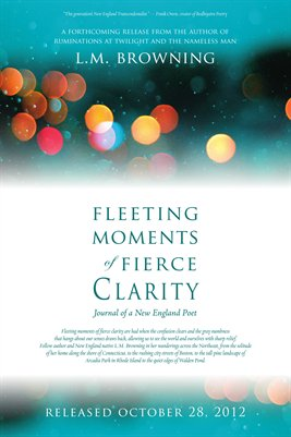 Fleeting Moments of Fierce Clarity Release Poster