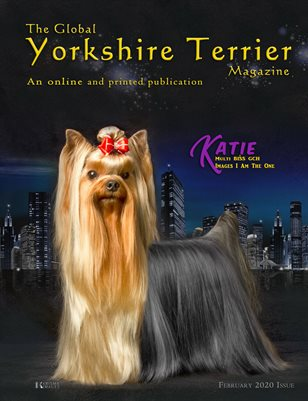 The Global Yorkshire Terrier Magazine - FEBRUARY 2020